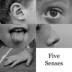 five senses gratitude