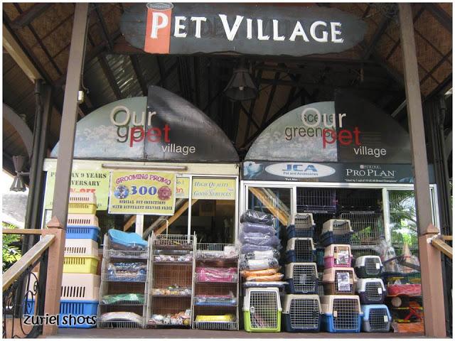 Tiendesitas Often Sells Sick Pets to Unknowing Customers