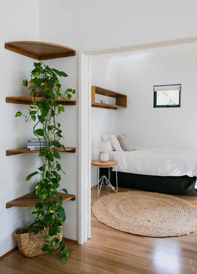interior of cozy lounge with potted green plants on shelves |  How to Make Your Small Space Feel Bigger