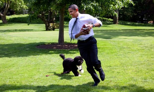 Obama Family Dog, Bo, Dies at Age 12