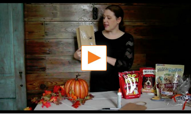 Do-It-Yourself Dog Treat Bags for Halloween
