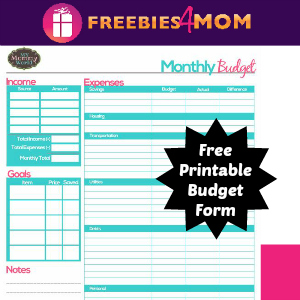 Free Printable Household Budget Form