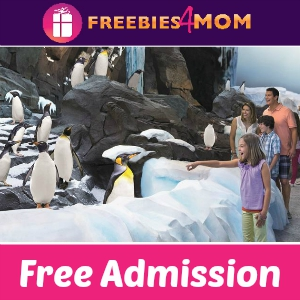 Free Admission for Military at SeaWorld & More