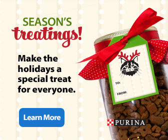 DIY Pet Gifts from Purina