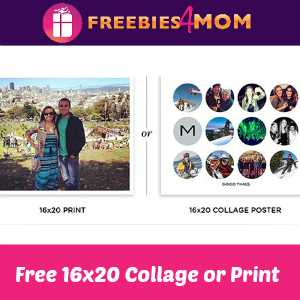Free Shutterfly 16x20 Collage Poster or Print