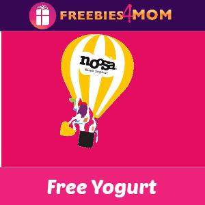 Free Noosa Yogurt