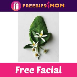 Free Facial at Aveda