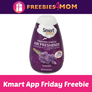 Free Air Freshener Cone at Kmart