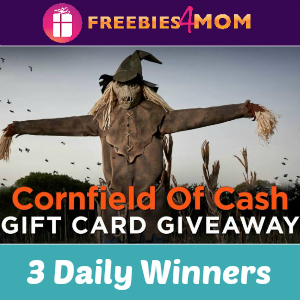 Sweeps Spirit Halloween Cornfield of Cash