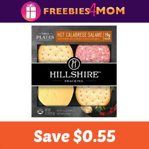 Save $0.55 On Any Hillshire Snacking Product