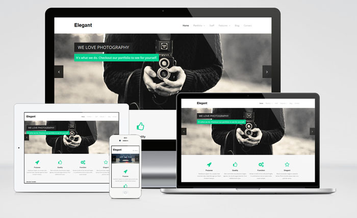 Elegant : Responsive Business and Portfolio WordPress Theme