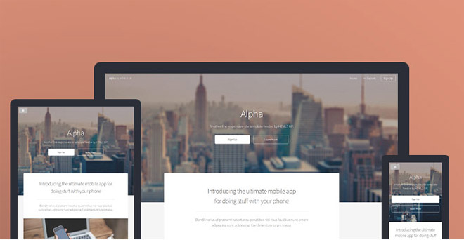 Alpha : Free Responsive HTML5 Template