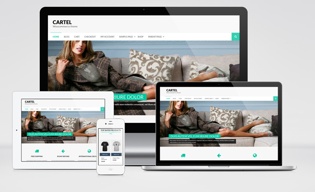 Cartel : Free Ecommerce WordPress Theme