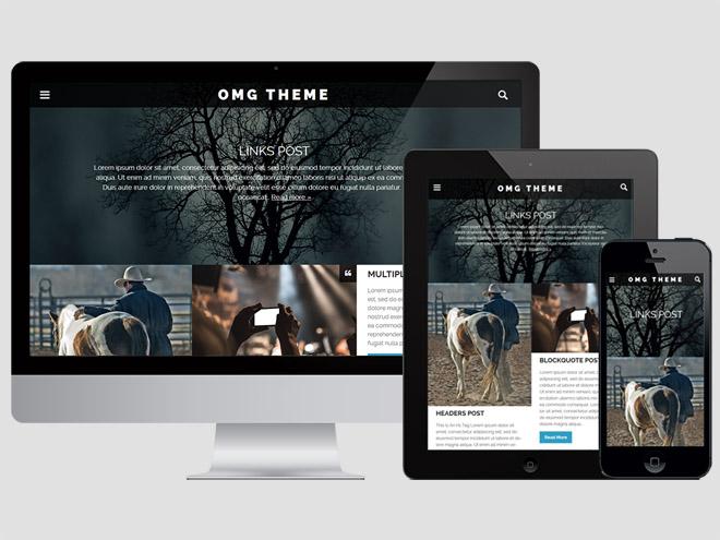 OMG : Free Responsive Personal Blog WordPress Theme