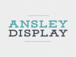 Ansley Free Display Typeface