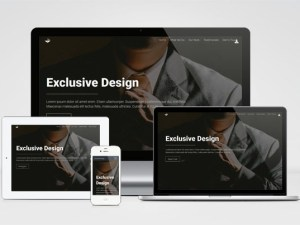 Exclusive Design : Free Responsive Bootstrap Template