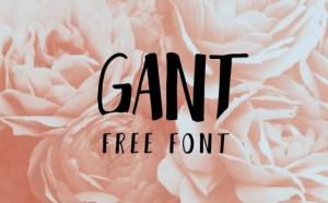 Gant : Free Elegant Font