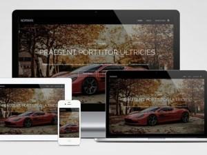 Norman : Free Fullscreen Photography WordPress Theme