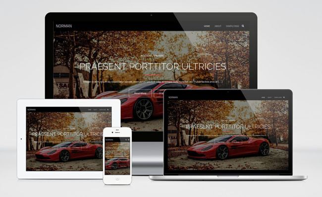 Norman : Free Fullscreen Photography WordPress Theme