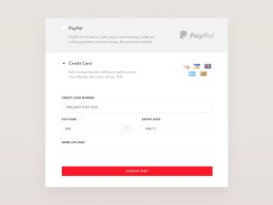 Credit Card Checkout Widget PSD