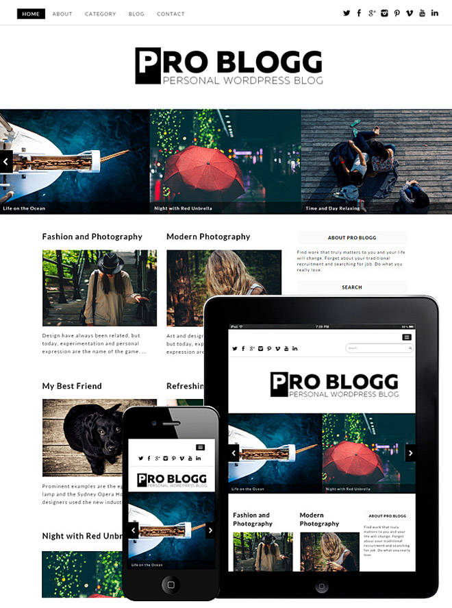 Pro blogg : Simple Blog WordPress Theme