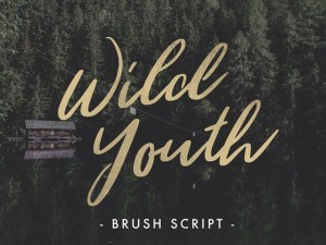 Wild Youth : Hand Drawn Brush Script Font