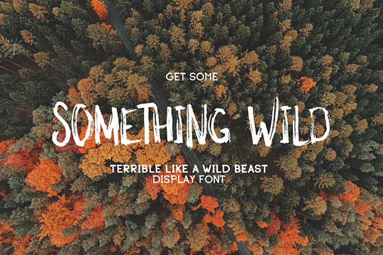 Something Wild Typeface