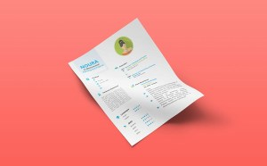 Free Infographic Resume AI Template