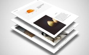 Fountain Minimal PSD Web Template