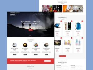 Zyloplus : Business Wordpress Theme