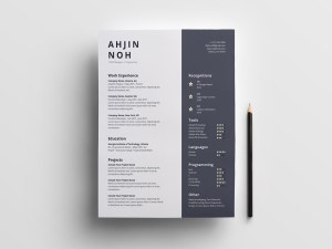 Simple Illustrator Resume Template