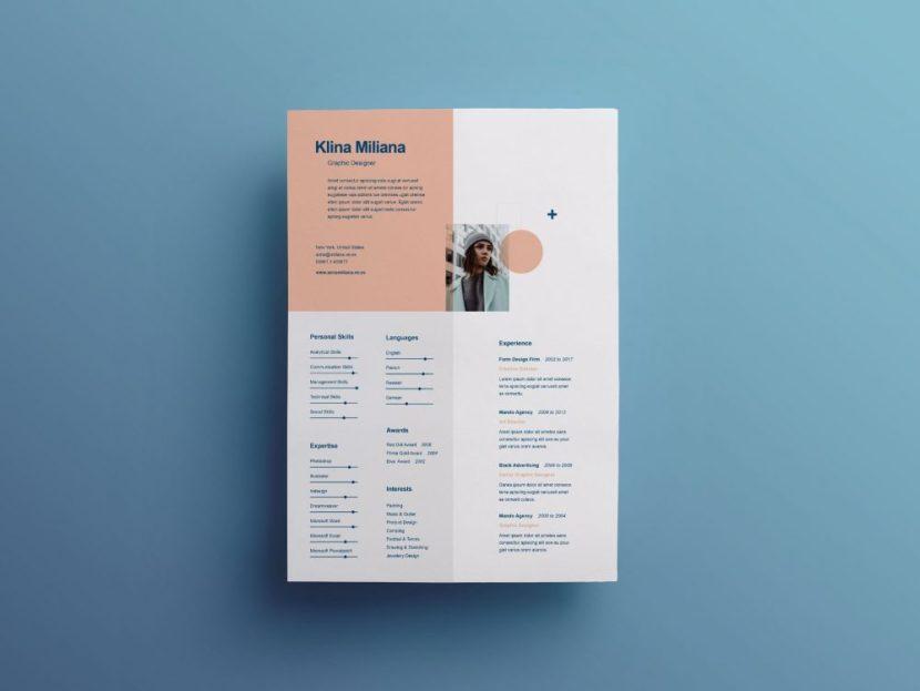 Free Split CV Template