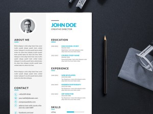 Free Vector Illustrator CV/Resume Template