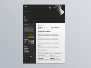 Free Visual Designer Resume Template