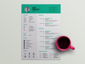 Free Director Resume Template with Professional Design