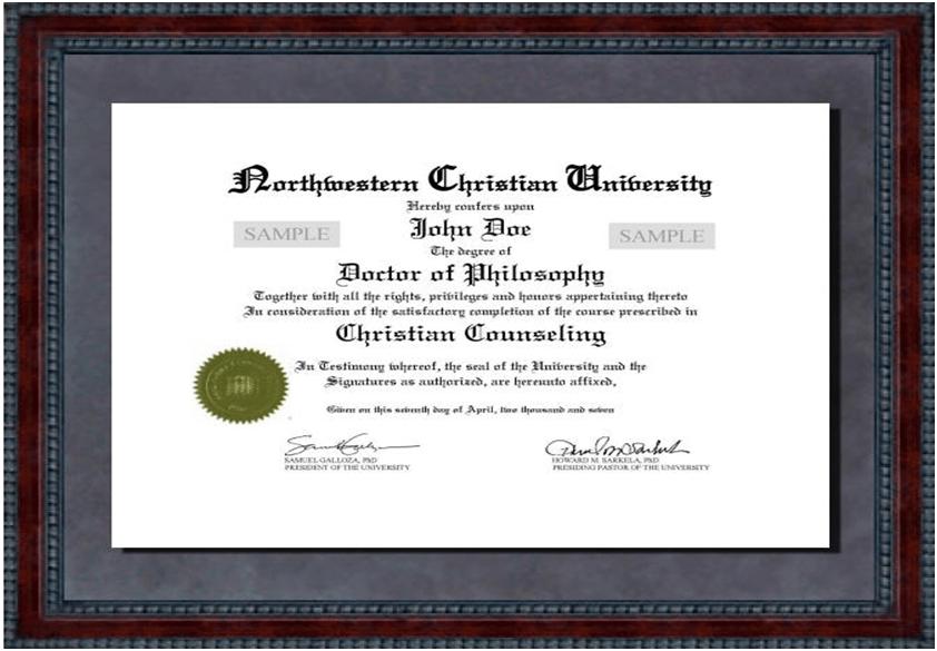 Doctoral dissertation northwestern university