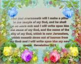 BIBLE VERSED (1)