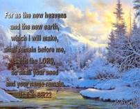 BIBLE VERSED (4)
