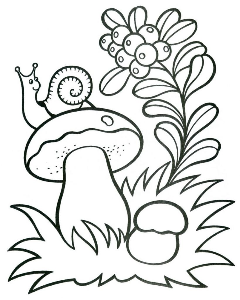 printable mushroom coloring pages