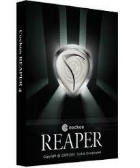 Cockos REAPER 5.978 Crack