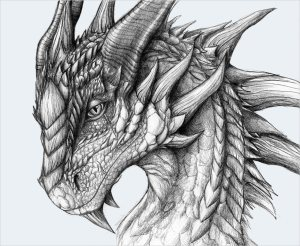 dragon drawing fierce drawings dragons pencil sketches simple realistic head mythical eyes source awesome