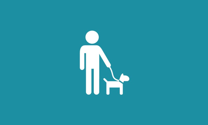 Guide dog illustration
