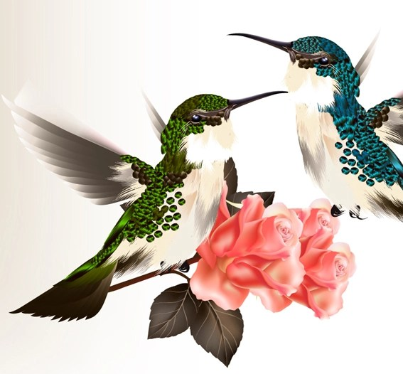 Hand drawn hummingbird vector material 02