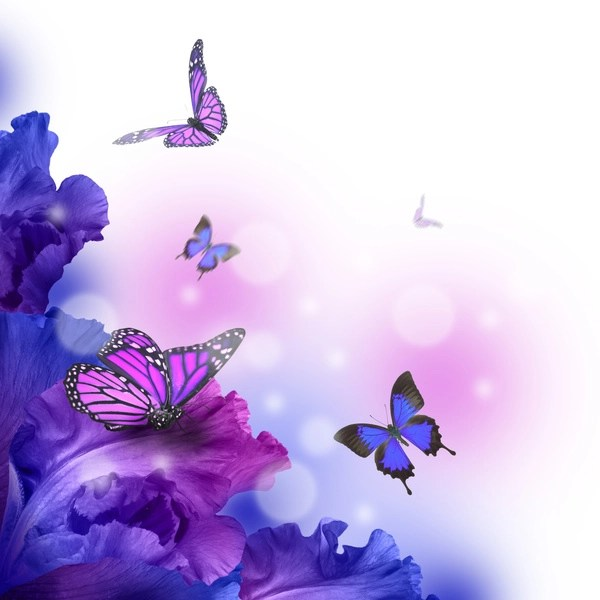 Free 3d Butterfly Desktop Wallpaper Background Butterfly Hd Picture