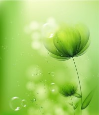 Green flower background Stock Photo free download