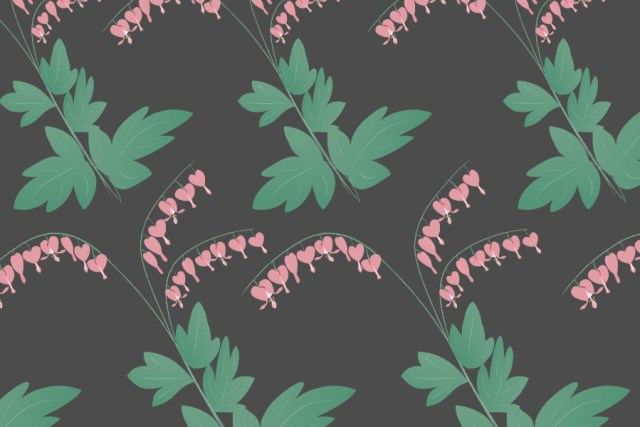 Bleeding Hearts - Free Vector Flowers