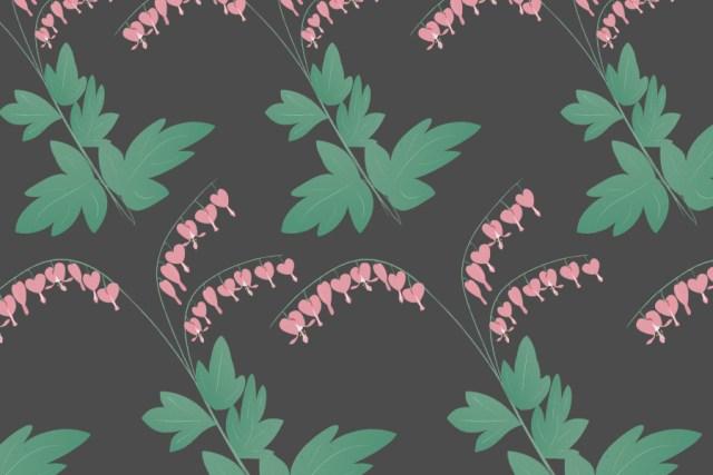 Bleeding Hearts - Free Vector Flowers