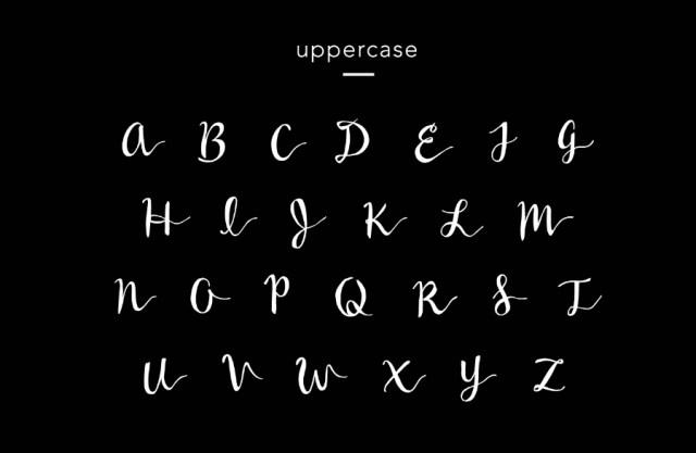 Wildera Script Free Typeface