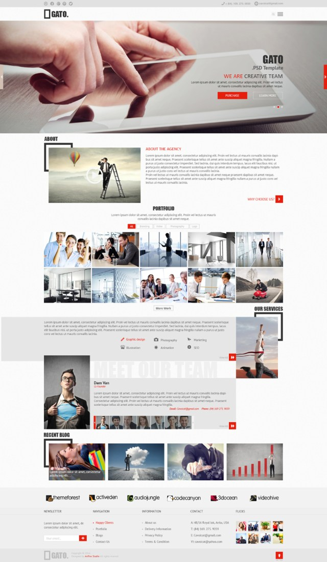 Gato Free Website Template