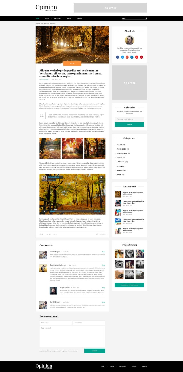 Opinion Free Blog PSD Template